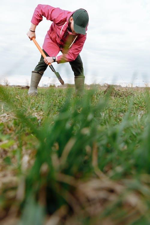 Δωρεάν στοκ φωτογραφιών με αγροτικός, γεωργία, γεωργικός