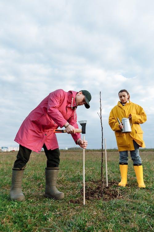 Δωρεάν στοκ φωτογραφιών με αγροτικός, αδιάβροχο, γεωργία