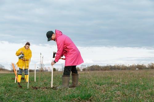 Kostenloses Stock Foto zu bäume pflanzen, grasfläche, landwirtschaft