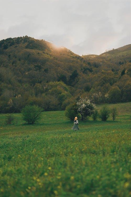 Person in Black Jacket Walking on Green Grass Field