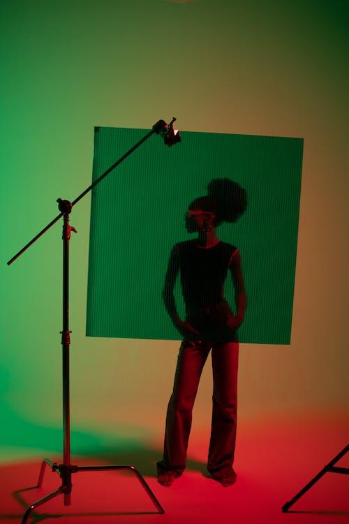 모델, 사진 촬영, 서 있는의 무료 스톡 사진