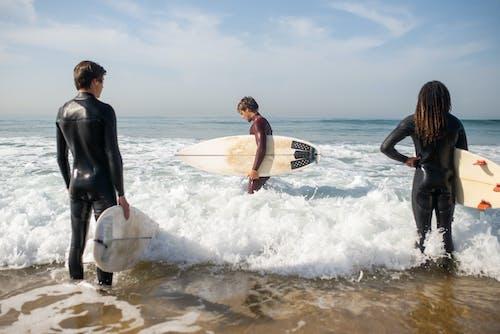 Foto profissional grátis de beira-mar, enseada, esporte aquático
