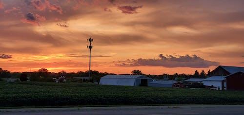 Free stock photo of everything yellow, golden sunset