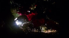 night, decoration