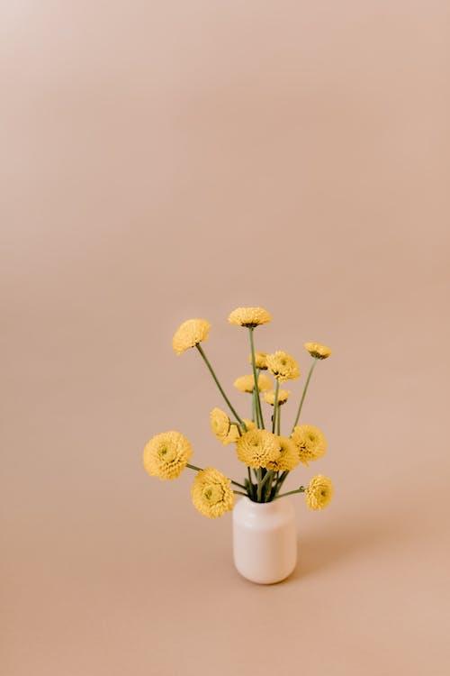Fiori Gialli In Vaso In Ceramica Bianca