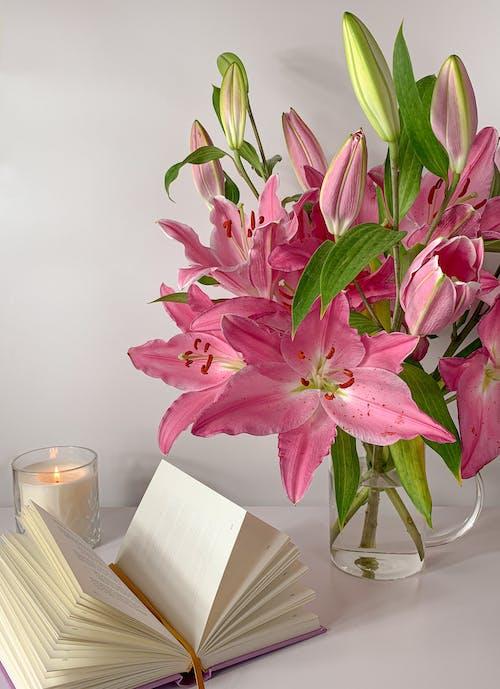 Immagine gratuita di candela accesa, fiori rosa, fioritura