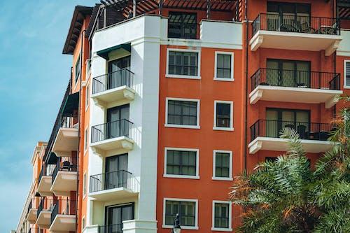 Immagine gratuita di condominio, edificio, timpani di corallo
