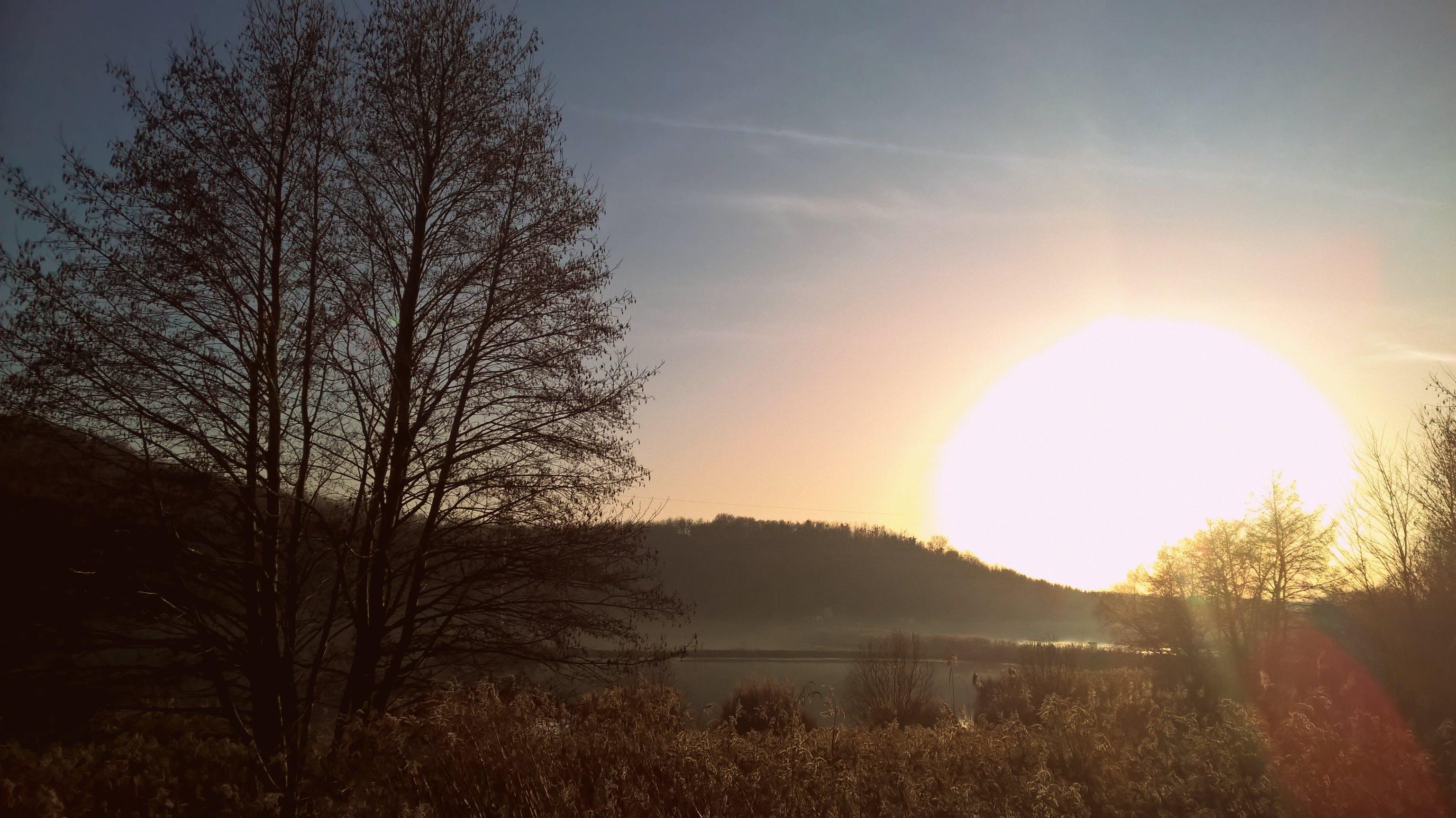 Free stock photo of gersekarat, hungary, lake, sun