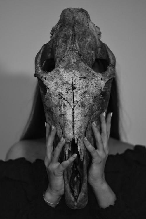 Безкоштовне стокове фото на тему «Анатомія, дорослий, жах»