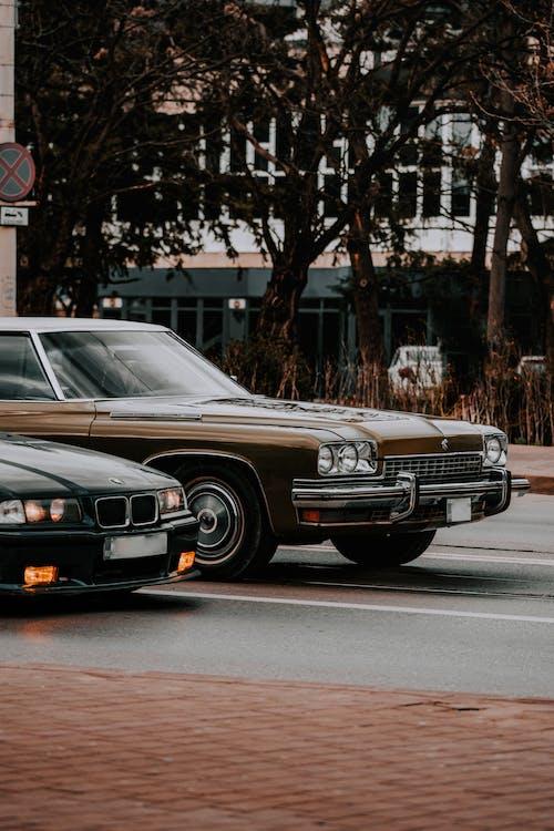 Безкоштовне стокове фото на тему «mustang, автомобіль, автомобільний»