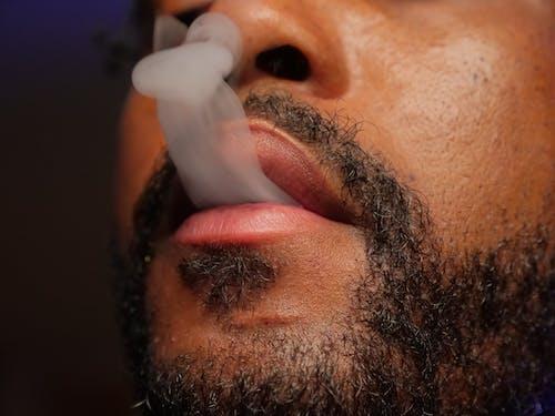 Foto profissional grátis de afro-americano, barbado, barbudo