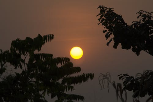 Foto profissional grátis de ascensão do sol, céu do sol, cor do sol