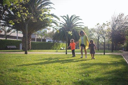 Gratis stockfoto met bomen, dochter, familie