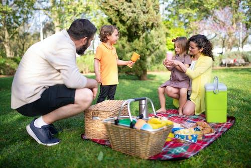 A Family Having a Picnic