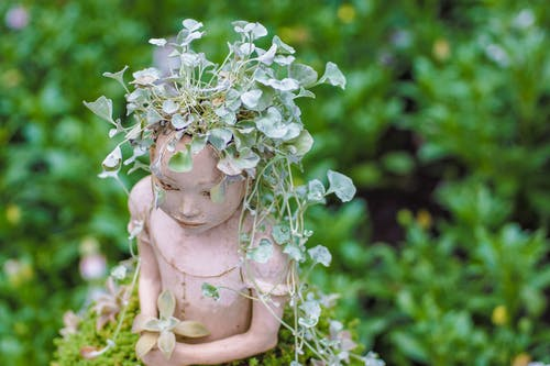 계절, 꽃, 꽃병의 무료 스톡 사진