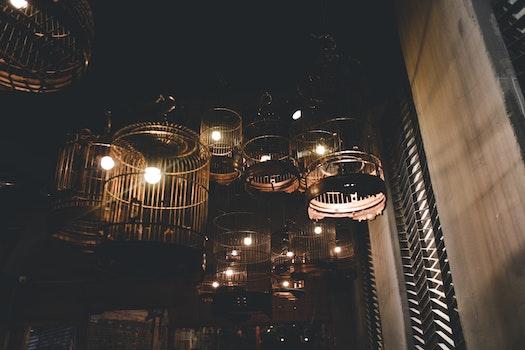 Black Birdcage Pendant Lamps