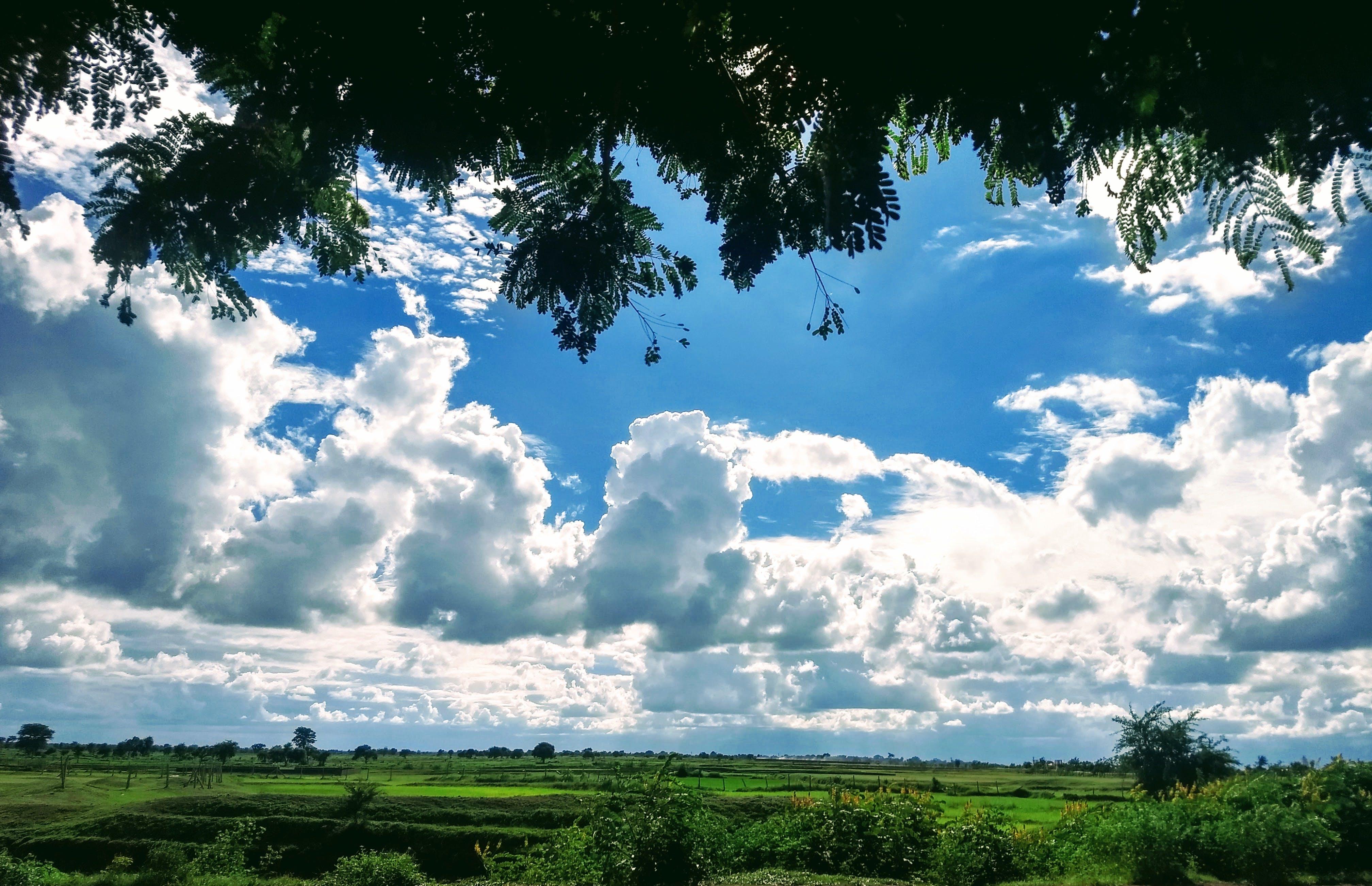 Free stock photo of cloudy sky, Dual pixel, green, motorola
