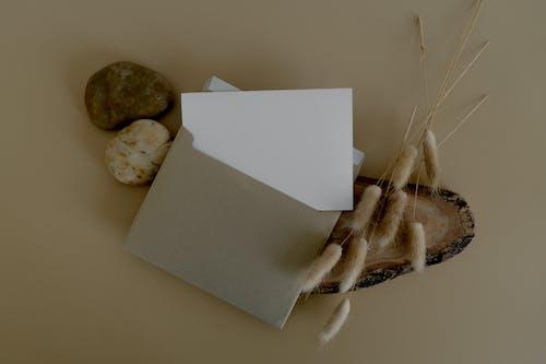 Бесплатное стоковое фото с бумага, в помещении, веревка
