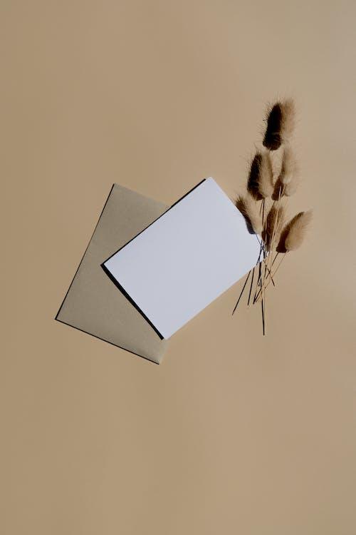 Бесплатное стоковое фото с абстрактный, бабочка, бумага