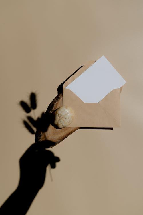 Бесплатное стоковое фото с бумага, Взрослый, животное