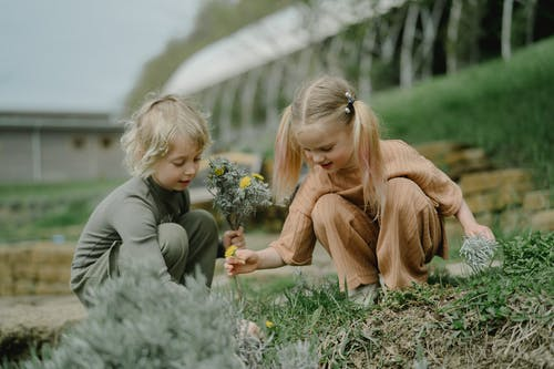 Children Picking Up Flowers