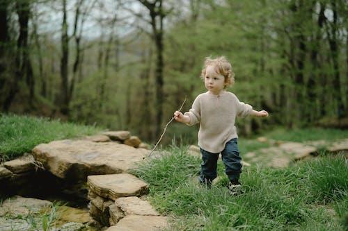 兒童, 可愛的, 年輕 的 免费素材图片
