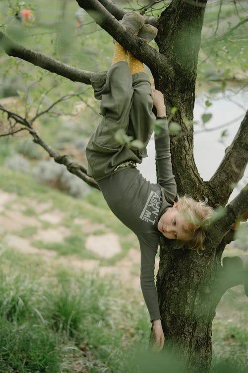 Woman in Gray Long Sleeve Shirt and Gray Pants Sitting on Tree