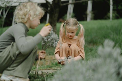 Foto profissional grátis de crianças, filhos, infância