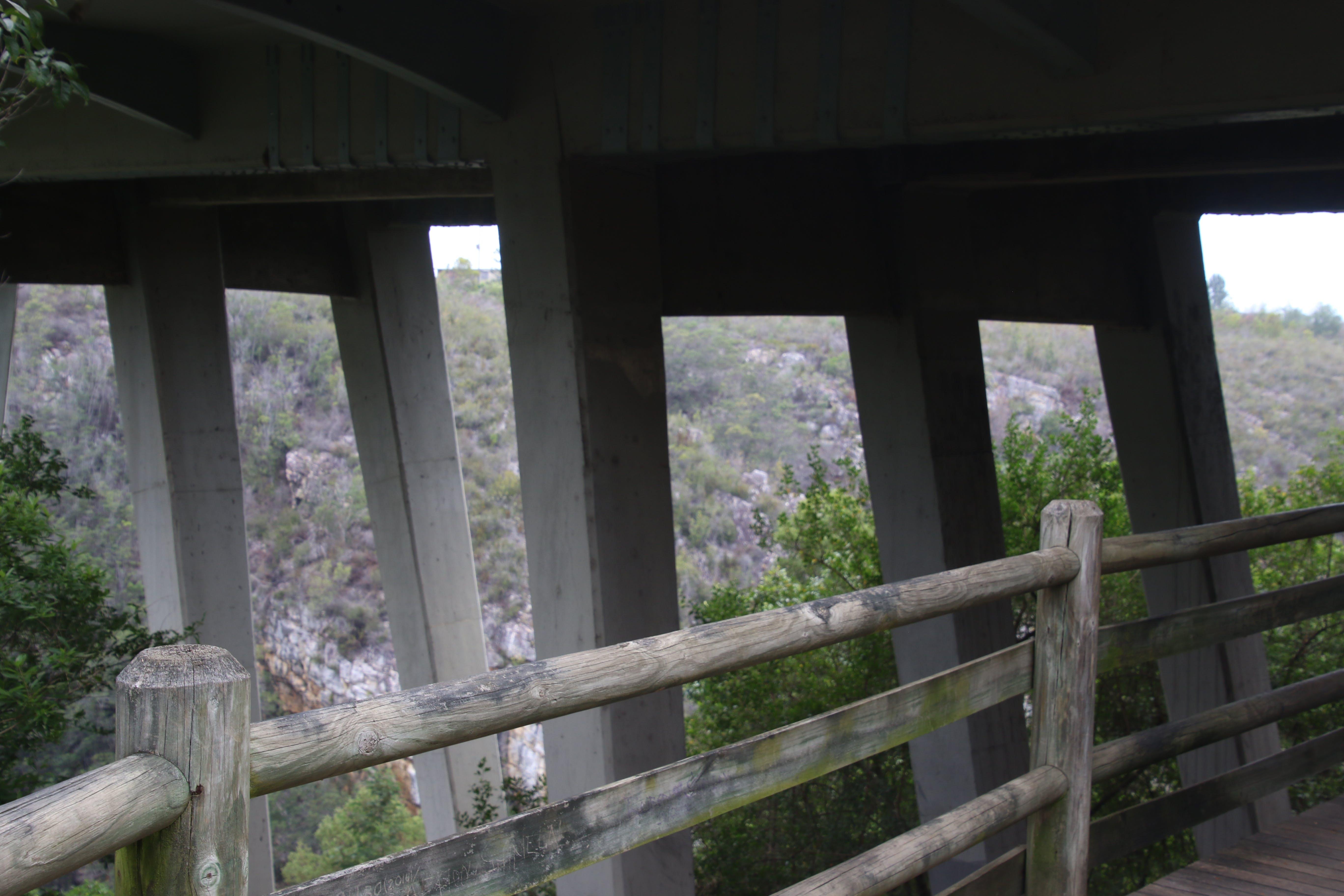 Free stock photo of road, nature, water, bridge