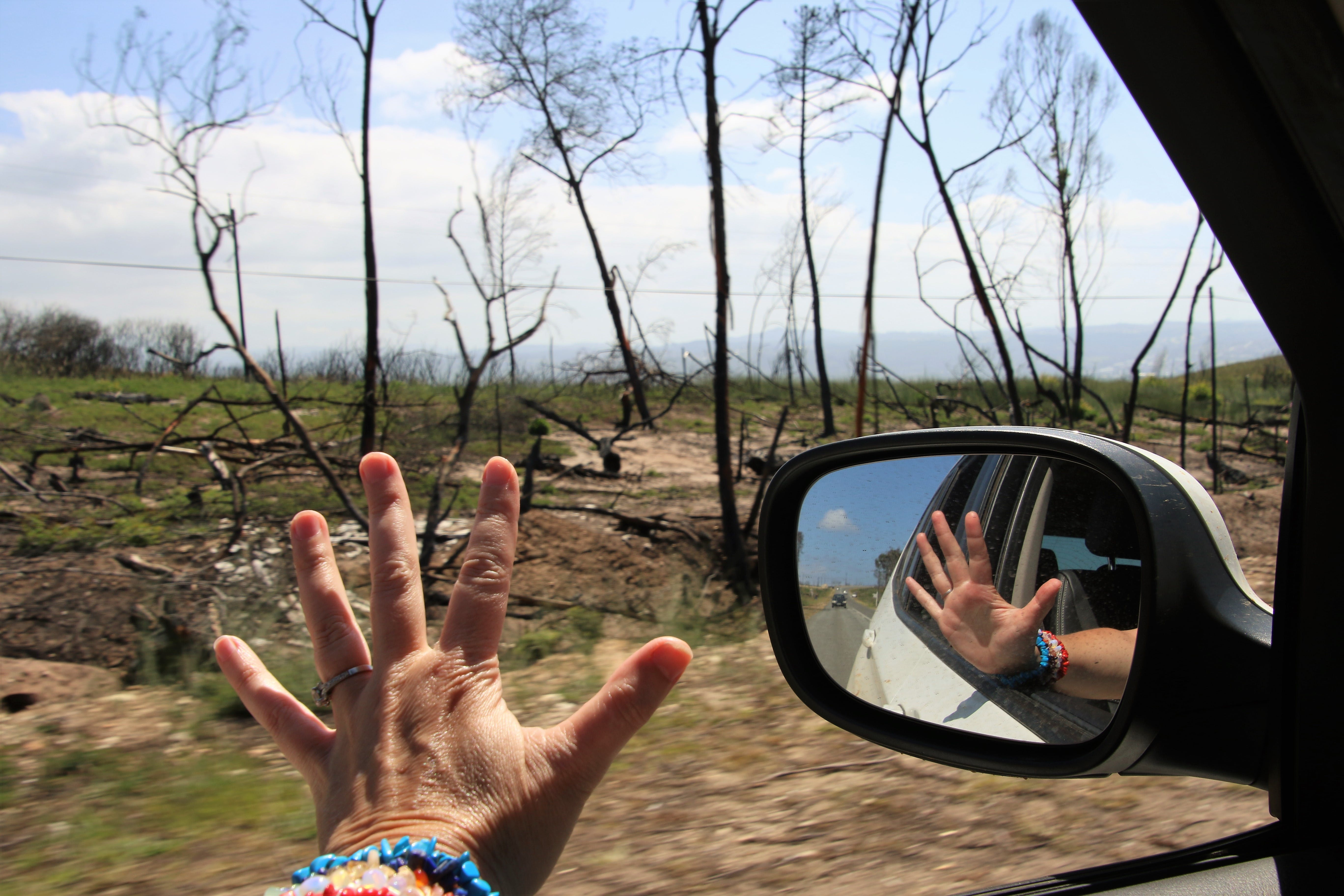 Free stock photo of nature, hand, car, fire
