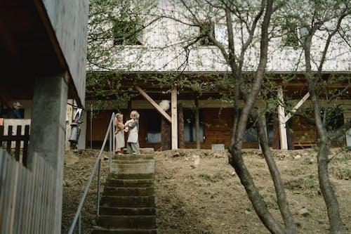 Kostenloses Stock Foto zu architektur, baum, draußen