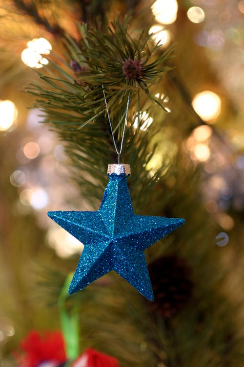 Shallow Focus Photography of Blue Star Christmas Tree Decor