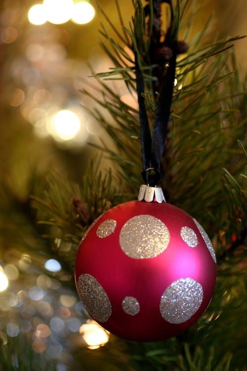 Free stock photo of christmas ball, christmas decor, christmas decoration, christmas tree