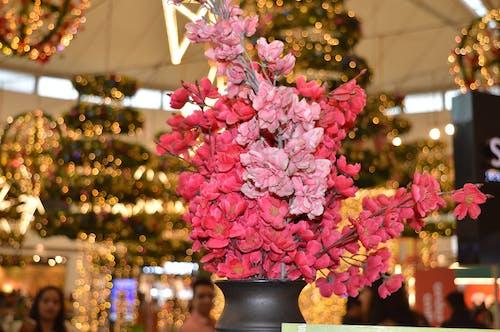 Photos gratuites de bouquet de fleurs, décor, décorer, fausses fleurs