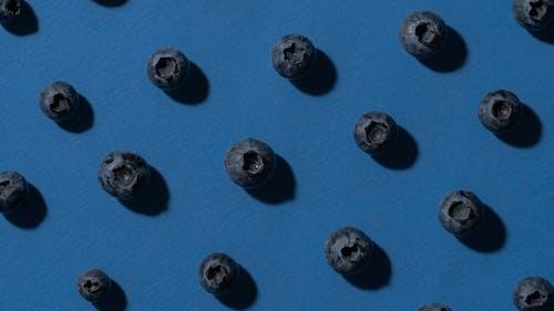 Darmowe zdjęcie z galerii z jagody, niebieski, owoc