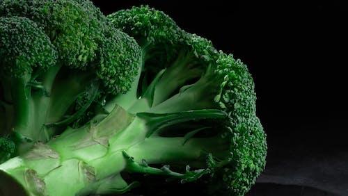 Green Vegetable on Black Background
