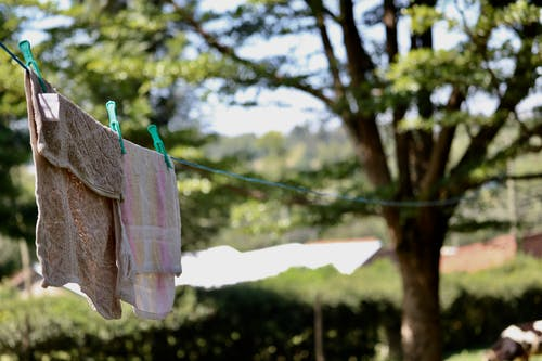 曬衣繩 的 免费素材照片