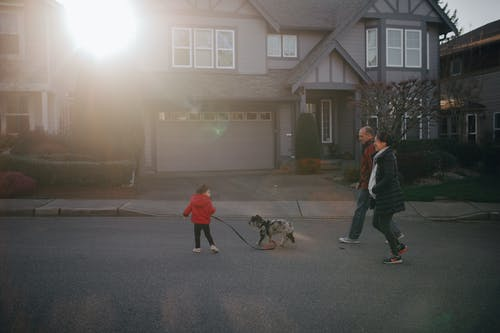 A Family Walking On The Street With Their Dog