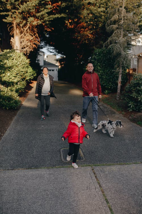 A Family Talking A Walk Outdoors With Their Dog