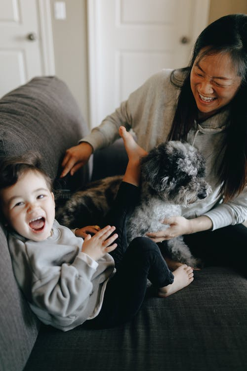 Happy Mother And Child Playing With Their Pet Dog