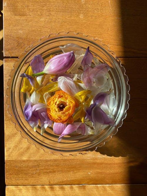 Ingyenes stockfotó aroma, aromás, aromaterápiás témában