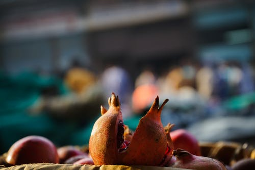 Gratis stockfoto met blurry achtergrond, close-up, detailopname, fruit