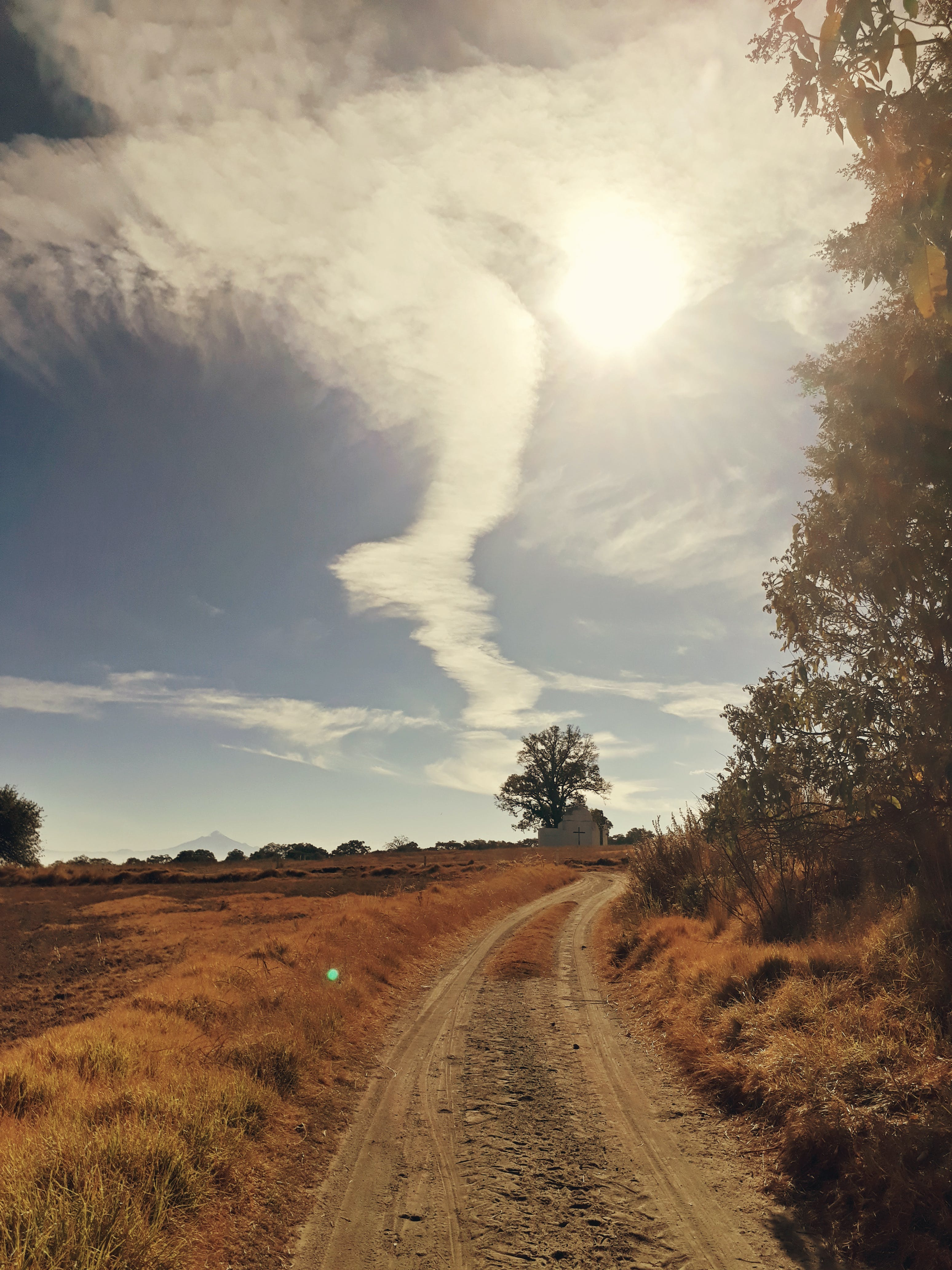 Fotos de stock gratuitas de camino de tierra, carretera, césped, cielo