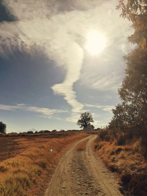 Kostenloses Stock Foto zu beratung, feldweg, gras, himmel