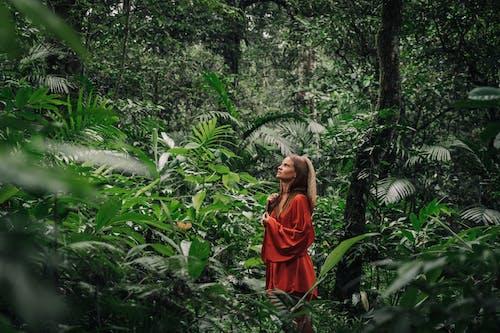 Бесплатное стоковое фото с Бали, Взрослый, девочка