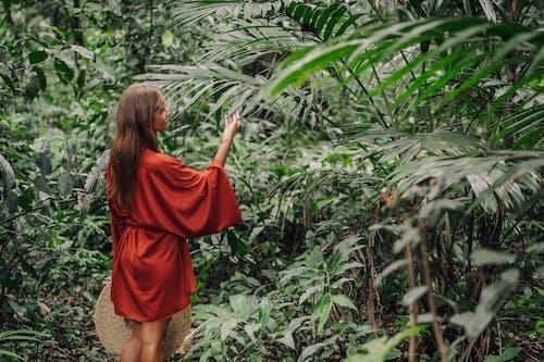 Free stock photo of adult, bali, bamboo