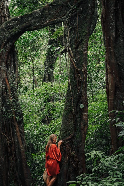 A Woman in Red Robe Standing Beside the Tree