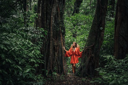 Woman in Red Dress Standing in Between Two Trees