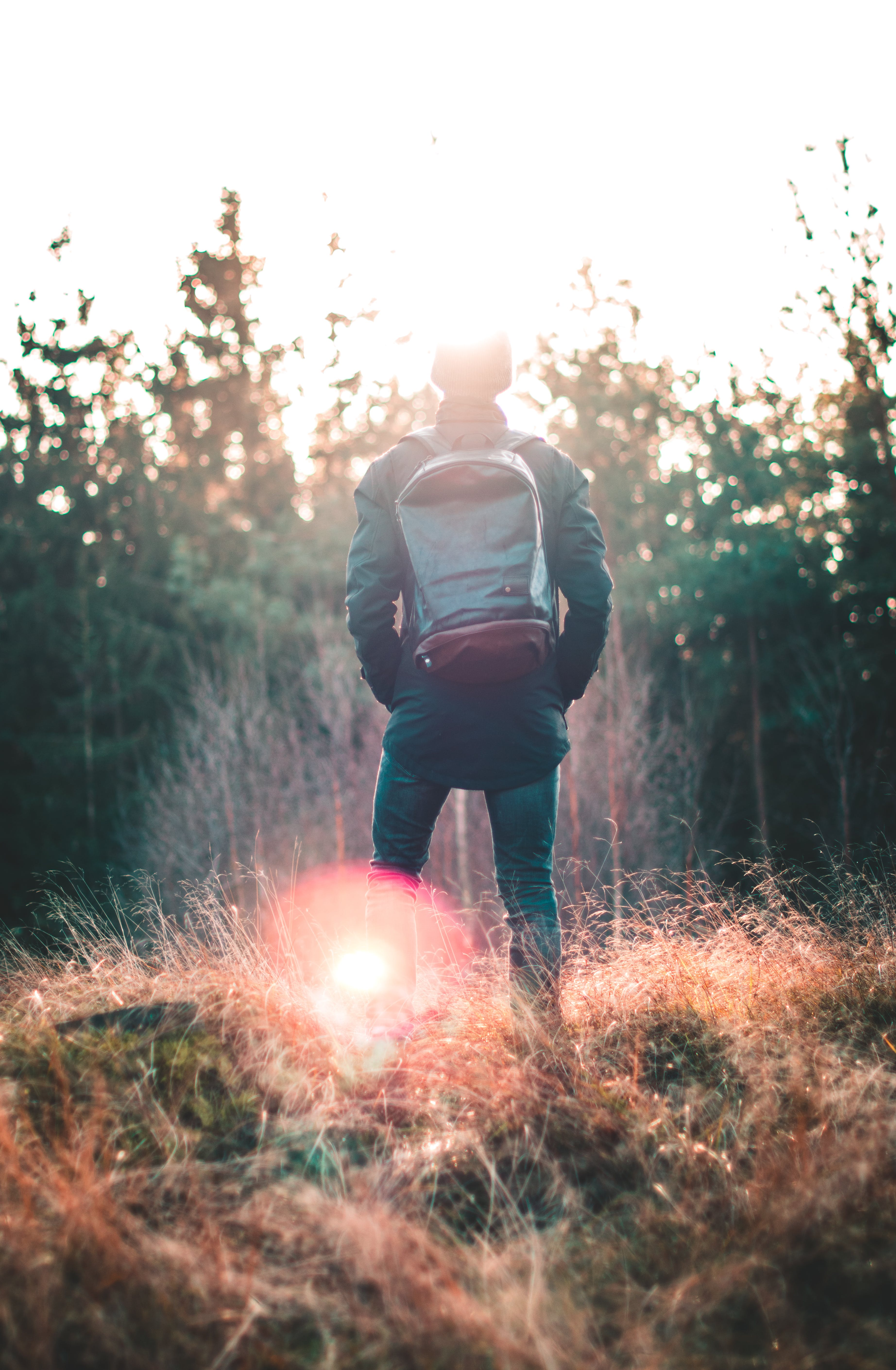 Man Standing Infront of Forest
