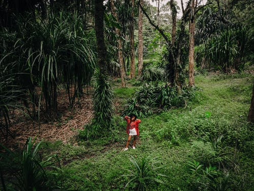 A Woman Standing in the Middle of the Rainforest